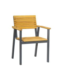 BENCH Arm Chair – ZA.267C – Robinia Wood